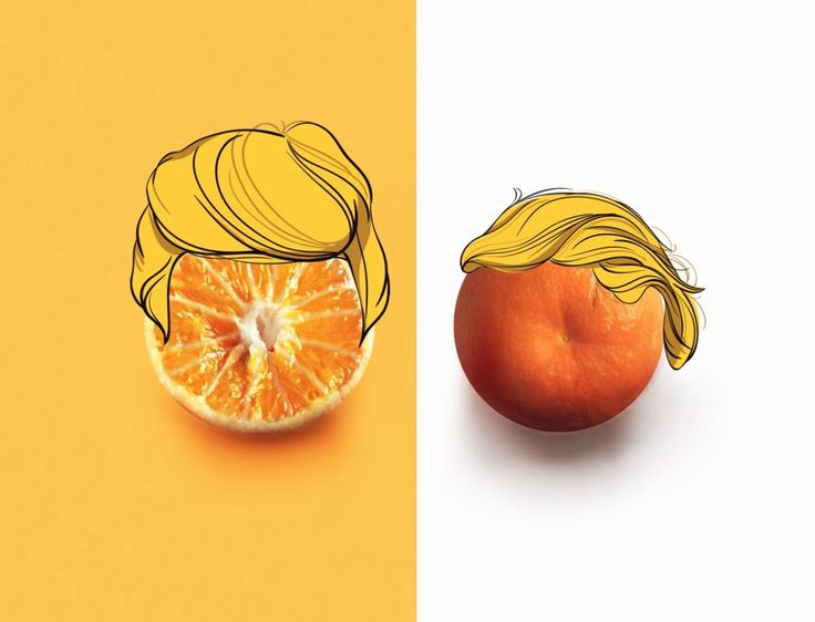 15 Things That Look Way Better With Donald Trump Hair