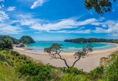 Take a 40 minute drive to beautiful Matapouri Bay and stop at Tutukaka for coffee, lunch or dinner at Schnappa Rock Restaurant & Bar