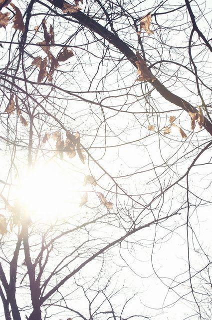 Autumn in the air (Bucharest)