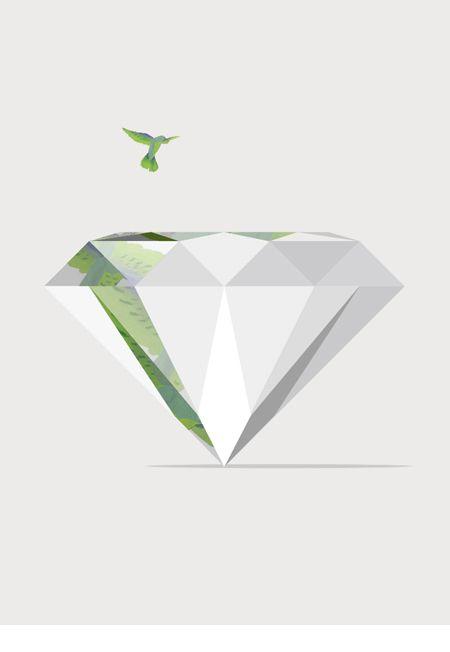 Bright like a Diamond, Free as a Bird