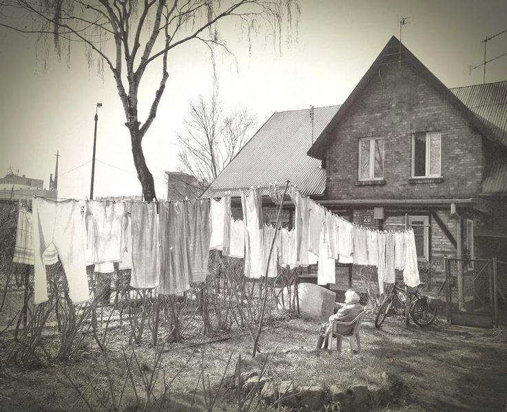 Rural Scenes-06