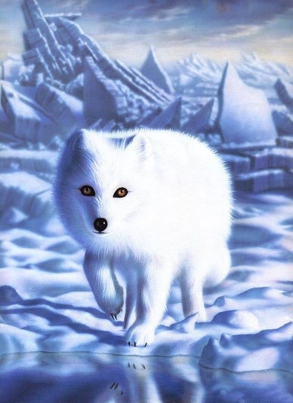 Image result for fantasy picture of a white fox