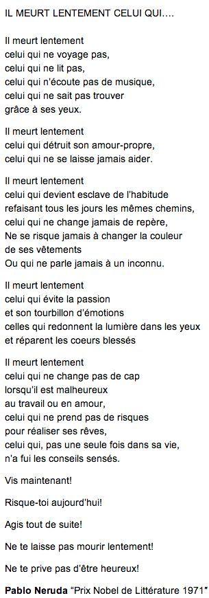 Magnifique !                                                       …