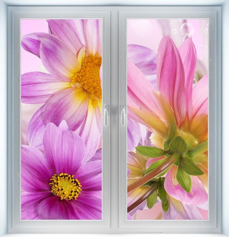 Majestic Wall Art - Violet Flower Instant Window, $44.00 (http://www.majesticwallart.com/instant-windows/violet-flower-instant-window)