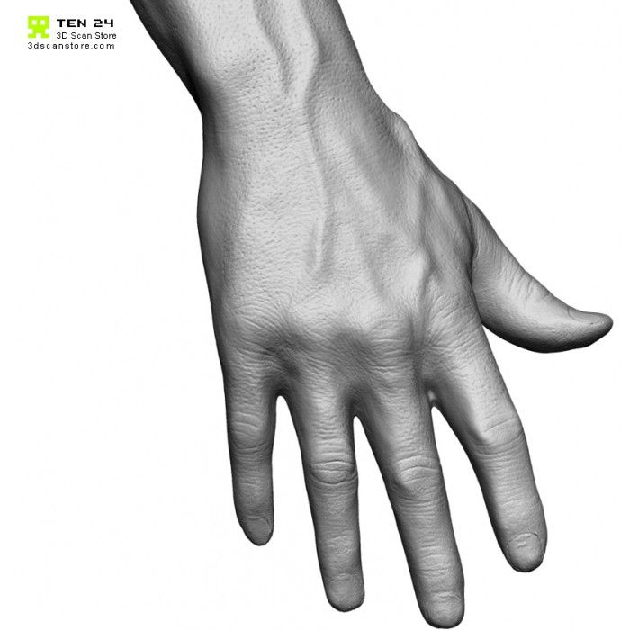 The 140 best Manos y Brazos images on Pinterest | Human anatomy ...