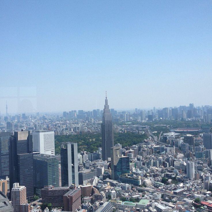 View of Tokyo from the Park Hyatt Grill