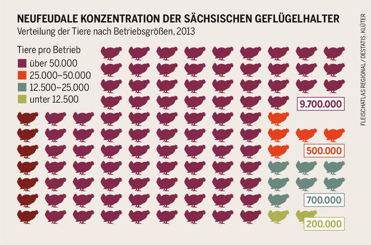 Neufeudale Konzentration der sächsischen Geflügelhalter.