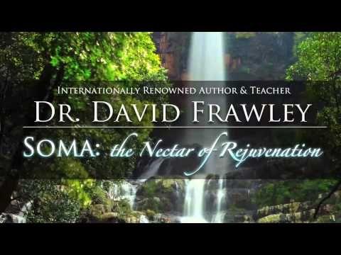 David Frawley   The Nectar of Rejuvenation Free Webcast