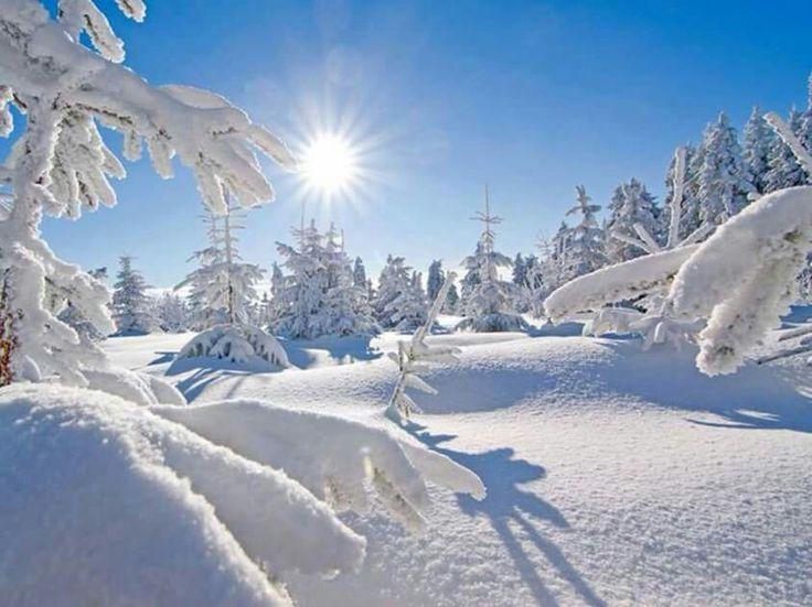 les 262 meilleures images du tableau paysages de neige sur pinterest paysage d 39 hiver beaux. Black Bedroom Furniture Sets. Home Design Ideas