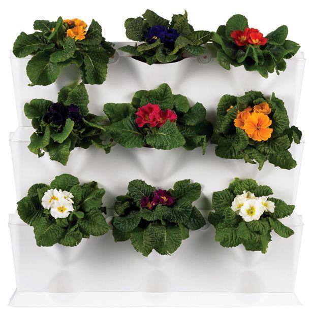 Pretty!: Living Wall, Green Wall, Green Gardens, Urban Gardens, Vertical Gardens, Wall Flower, Gardens Planters, Minis Vertical, Minigarden Setof3 Flowers1 Jpg