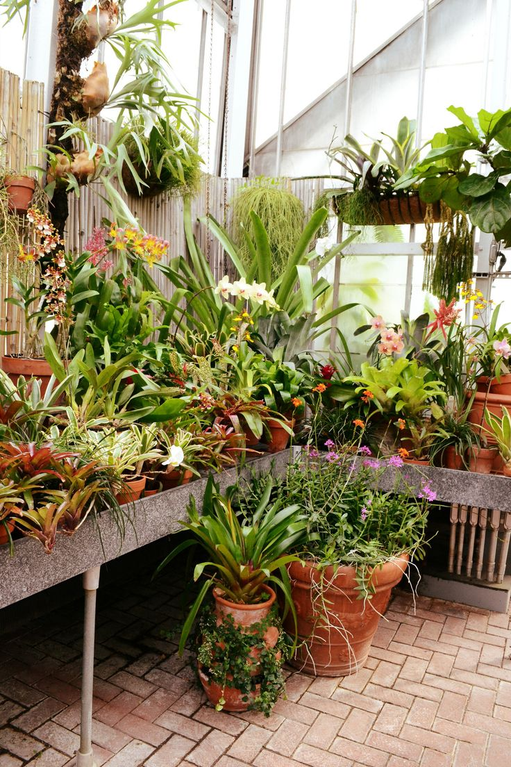 162 best greenhouse images on pinterest