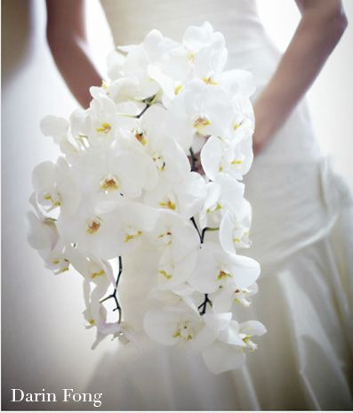Bridal Bouqeut will include a cascade of Phaeleonopsis orchids with a base of white hydrangea. Wow gorgeoussss!!