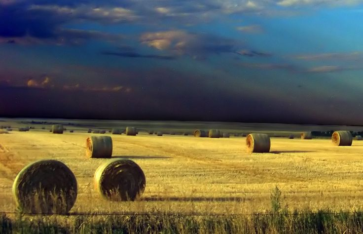 25 reasons to explore the Canadian prairies [PICs] | Gorgeous photos. Would love to go to Alberta some day.