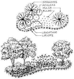 Keys to Landscape Design Planning