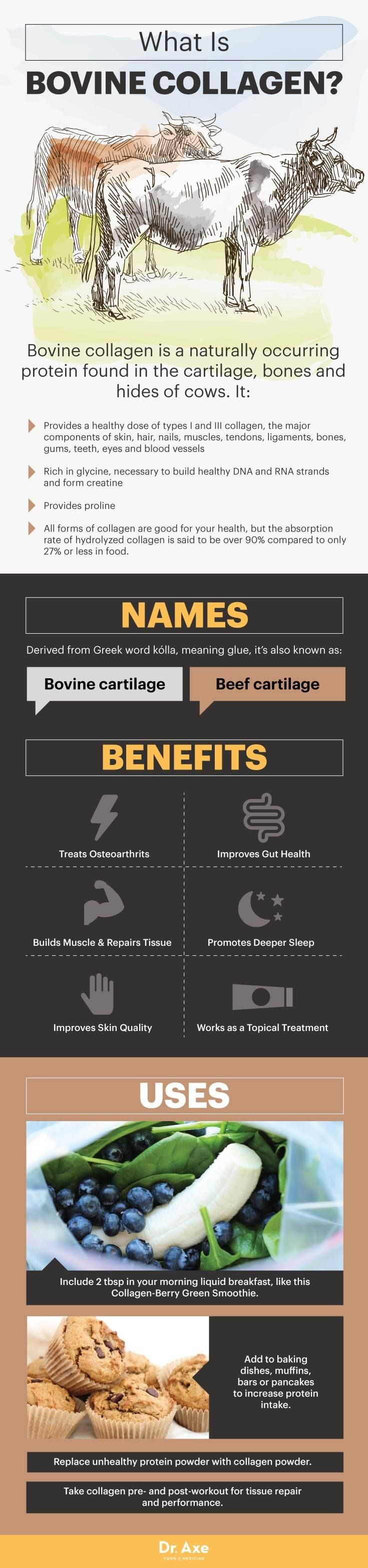 What is bovine collagen? - Dr. Axe http://www.draxe.com #health #holistic #natural
