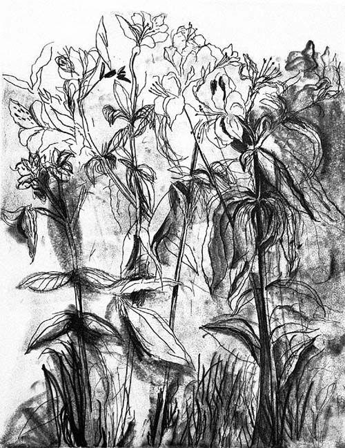 jim-dine-flowers-i3.jpg Jim Dine