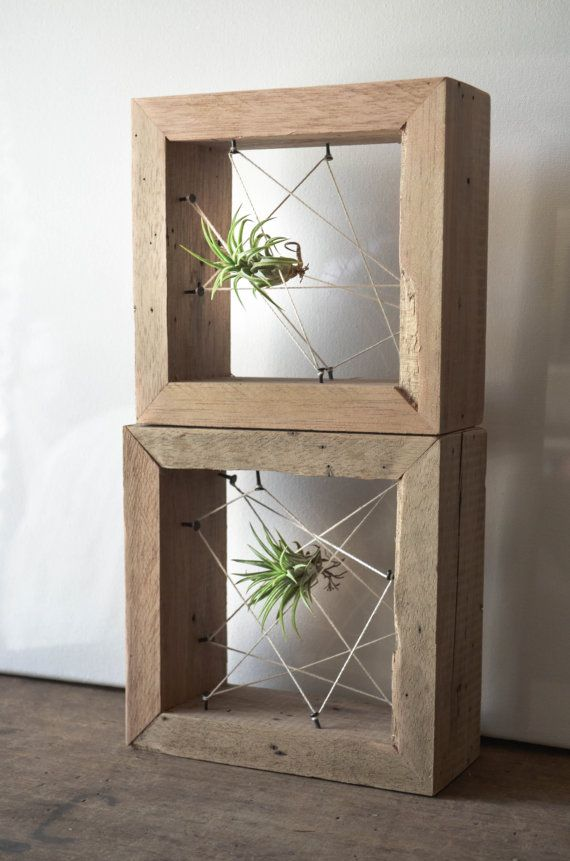 Rustic Reclaimed Recycled salvaged wood AIR PLANT holders. Vase, wall decor…