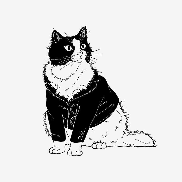 Catsuit