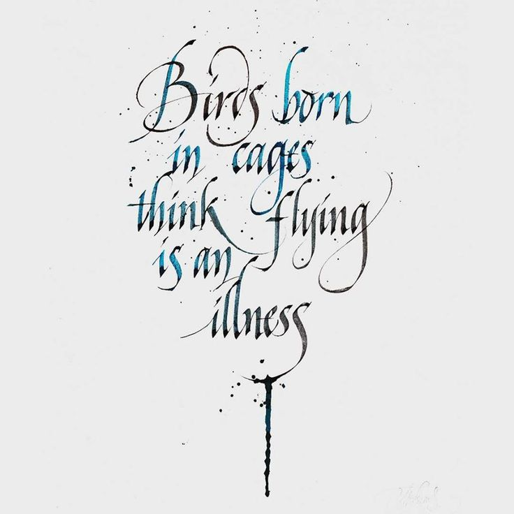 birds born in cages think flying is an illness - calligraphy by mr.kams // @misterkams