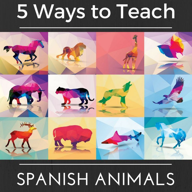 If You Want To Teach Children The Spanish Animal Names For Many Common Species Here Are Some Fabulous Spanish Animals Learning Spanish For Kids Teaching Kids