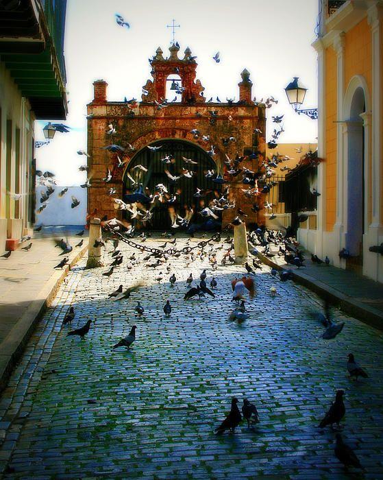 Parque Las Palomas, Viejo San Juan