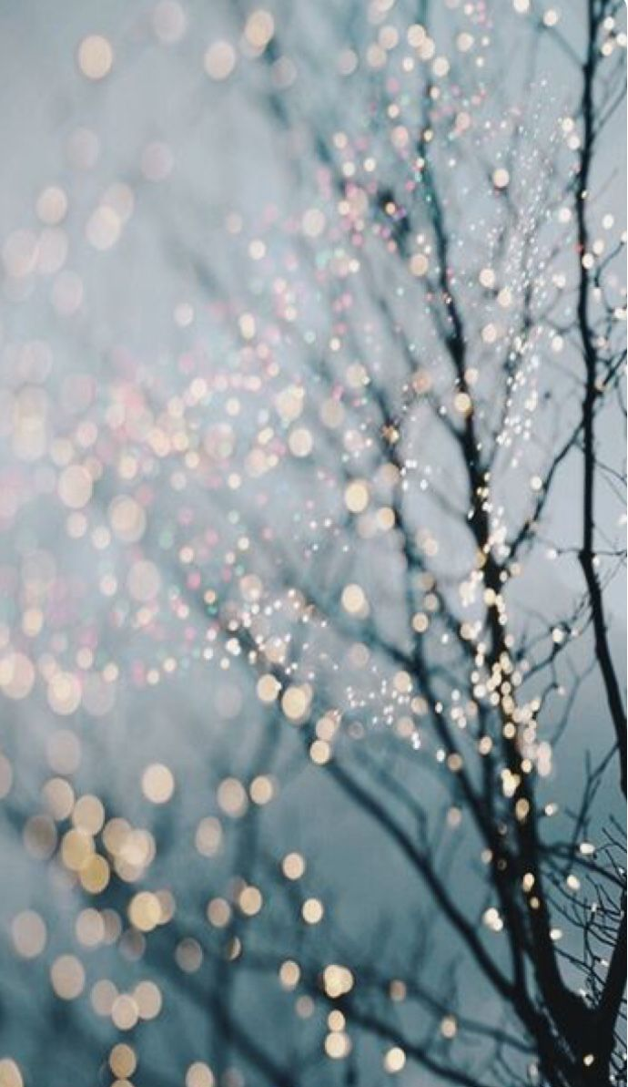 Blue Gold White Lights Aesthetics Winter Photography Fairy