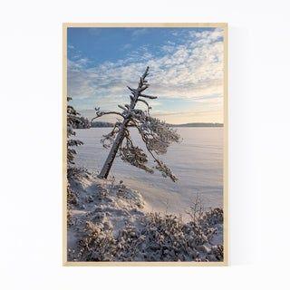 Noir Gallery Finland Winter Snow Landscape Framed Art Print (11 x 14 – White)