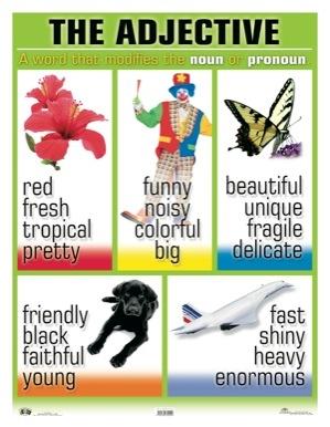 Adjective bijvoegelijk naamwoord