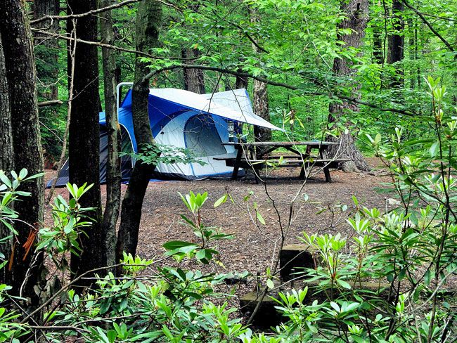 Backyard Camping Checklist :  Pinterest  Outdoor Recreation, Camping Essentials and Camping Gear