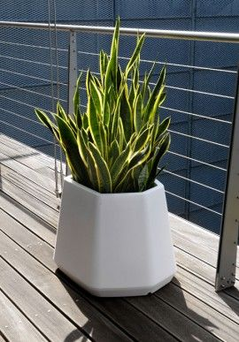 """Flowerpot - """"Ops medium"""" BUY IT NOW ON www.dezzy.it!"""