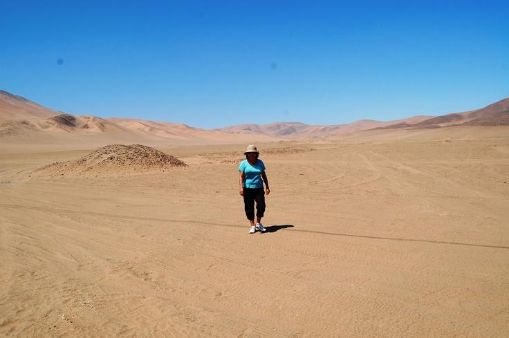 Desierto de Copiapo, Tercera Región de Atacama.