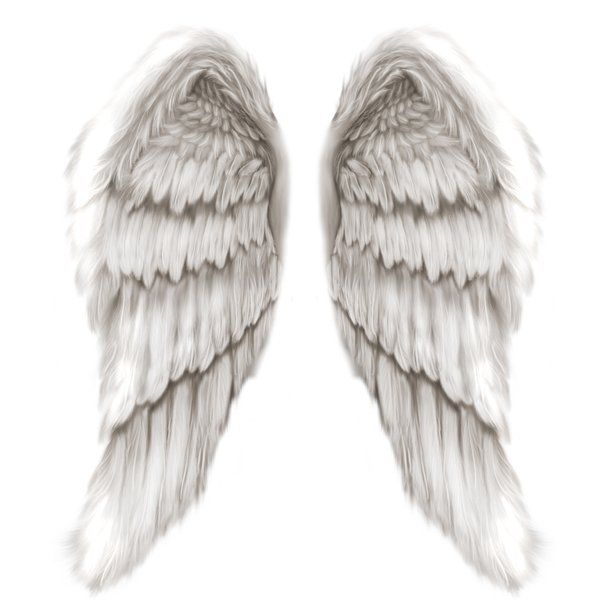 64 best Angel Wings images on Pinterest