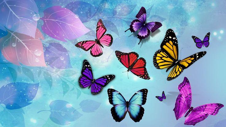 butterfly heaven wallpaper - photo #13