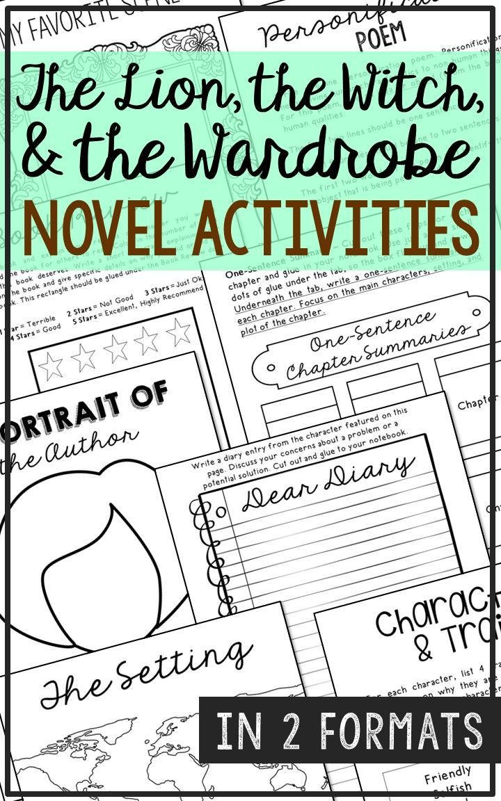 The Lion The Witch And The Wardrobe Novel Study Unit Activities