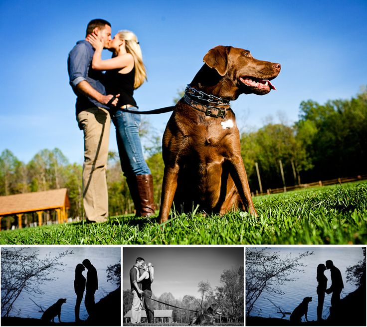 """engagement photos with dogs 