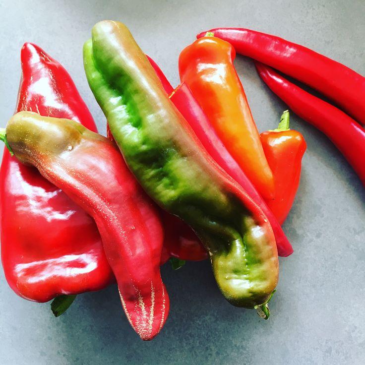 Fra min fantastiske mikrobonde, jordnærmat.no, fikk jeg noen chilier. Jeg bruker ikke mye chili i maten, så tenkte en chilisaus ville være perfekt å bruke de på. Og slik ble... Les mer