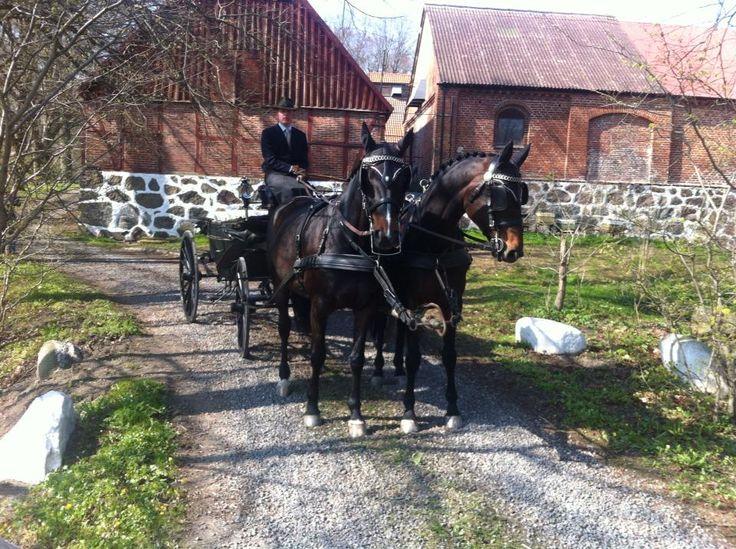 Bröllop och festlokal i Skåne - Tomarp Gårdshotell på Österlen