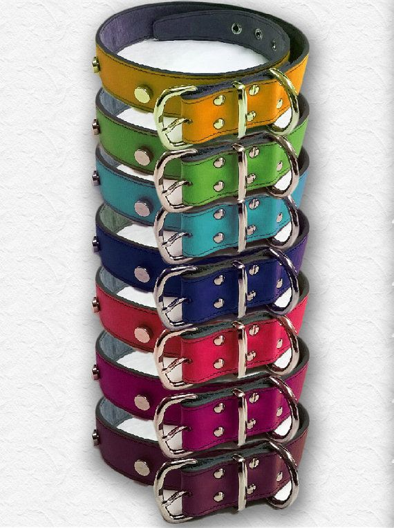 Collare in pelle colorati per cani _ Leather dog collar