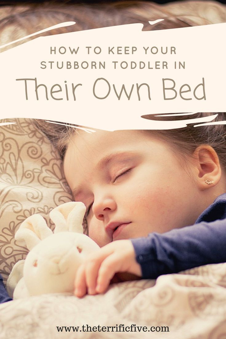 How to Keep Your Stubborn Toddler in Their Own Bed: Are you thinking about transitioning your kid to a toddler bed or big kid's bed? Read these tips on how to keep your kid in their own bed and out of yours! www.theterrificfive.com
