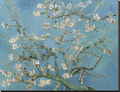 Almond Blossom, 1890 Toile tendue sur châssis