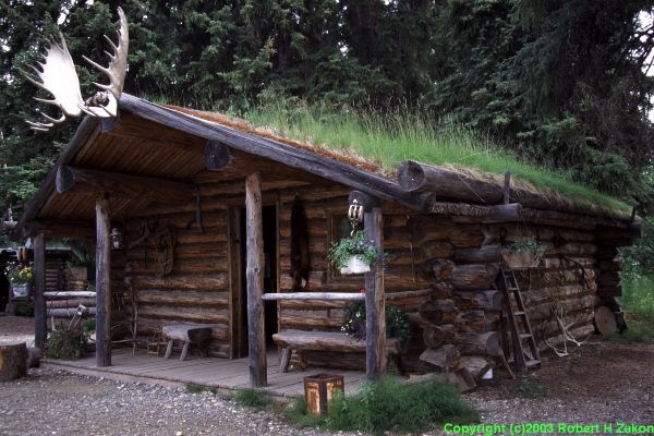 Alaskan Cabin - grass roof.  Got to tour a Alaskan tribal community with cabins just like this.  So neat.