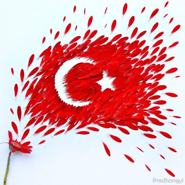 Red Hong Yi 'nin Jerbera yapraklarıyla yapmış olduğu Türk bayrağı