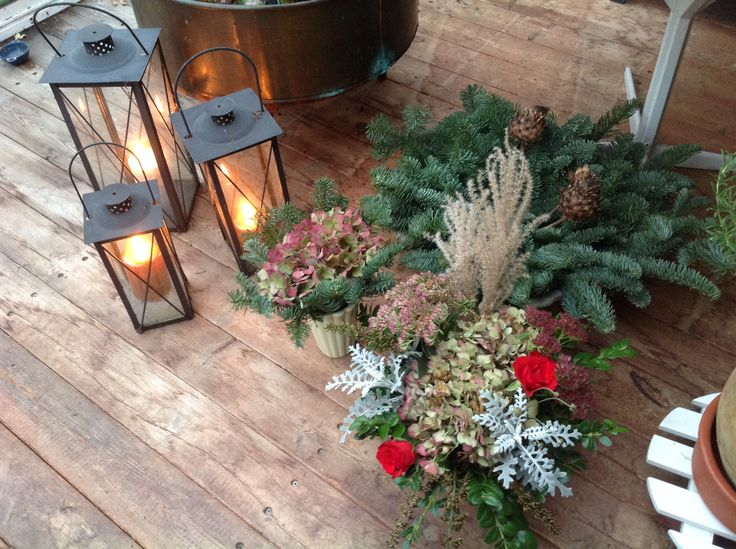 Christmas decoration in my greenhouse/sunroom