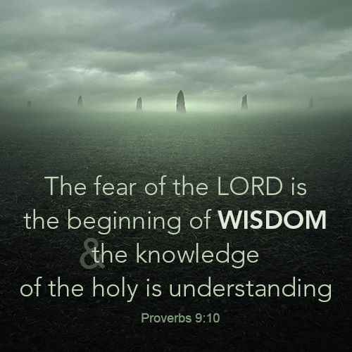 77 Best Images About Bible Wisdom On Pinterest