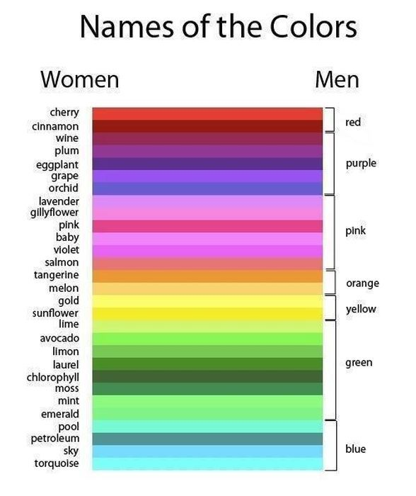 once and for all... let's just make this simple... ;): Colors Charts, Funny Pics, Funny Pictures, Website, Web Site, Internet Site, So True, Men Vs Woman, True Stories
