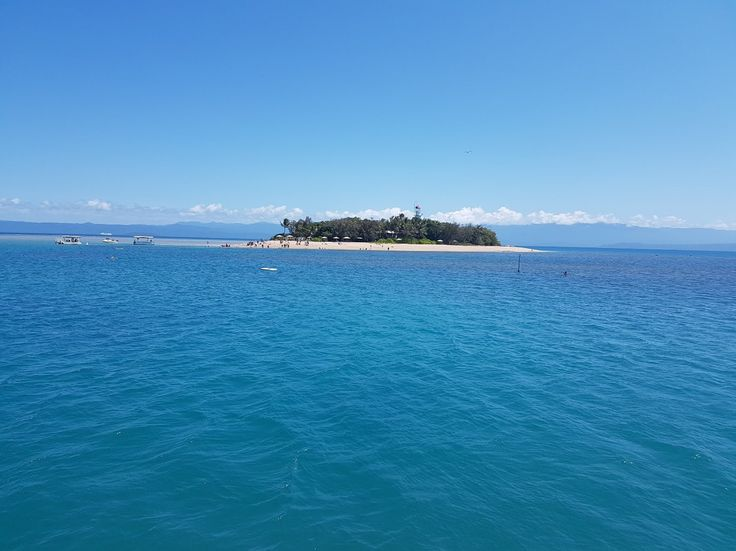 Low Isles Day Tour, Port Douglas, Qld