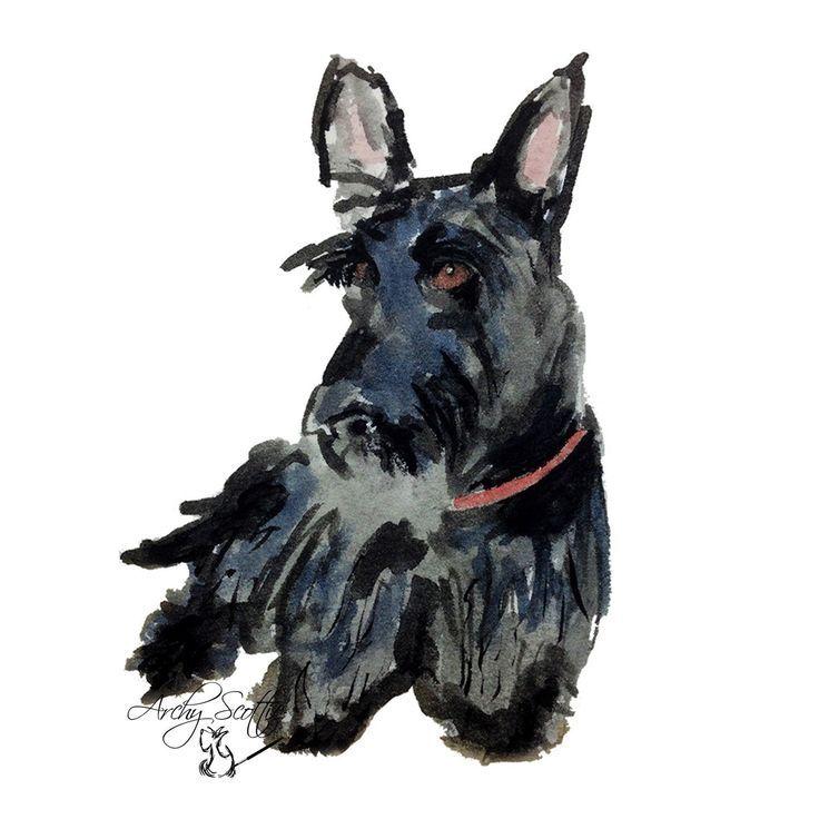 Zehn Scottish Terrier Dog A6 Grusskarten Scottie Dog 153 With Images Scottie Dog Scottish Terrier Terrier Dogs
