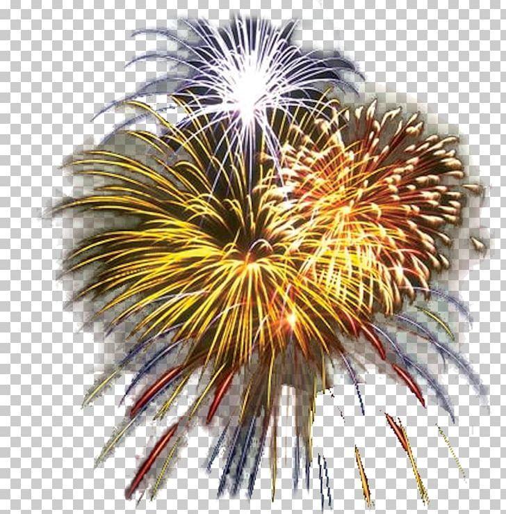 Fireworks Svg Png Jpg Dxf Fireworks Bundle 4th Of July Svg File Fourth Of July Fireworks Clipart Independence Day Silhouette Cricut Fireworks Svg Fireworks Clipart Fourth Of July Crafts For Kids