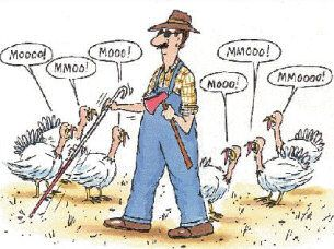 I can't think of a blind farmer actually attempting to chop the head off a turkey with an ax, but it's still a funny pic.