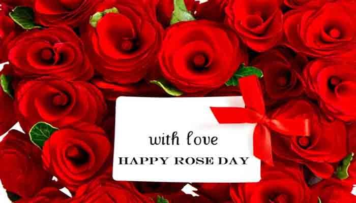 Rose Day Download Image Rose Day 2019 Rose Day Image Rose Day English Sms Rose Day Quotes Rose Day Greetings Rose Rose Day Wallpaper Message For Girlfriend